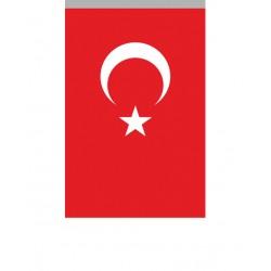 Alpaka Türk Bayrağı/003