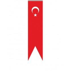 Kırlangıç Türk Bayrağı/004