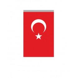 Alpaka Türk Bayrağı/005