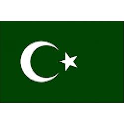 Dikey Direk Bayrağı / 004